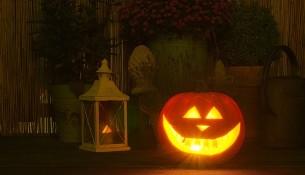 halloween-2894192_960_720